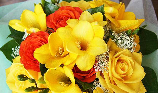今月の旬の花 誕生花 2月 フリージア 送料無料 ネット通販花屋花樹有(かじゅある )