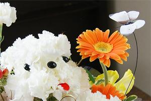 アレンジメント フラワーギフト 送料無料 ネット通販花屋花樹有(かじゅある )