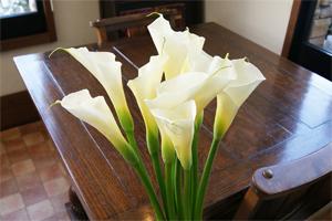 カラーの花束 UP