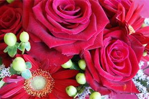 誕生日、結婚記念日、母の日、父の日、フラワーギフト お取り寄せ 送料無料 フラワーギフト ネット通販花屋 花樹有(かじゅある )