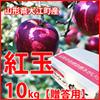 りんご 紅玉 贈答用10k  g