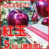 りんご 紅玉 贈答用5kg