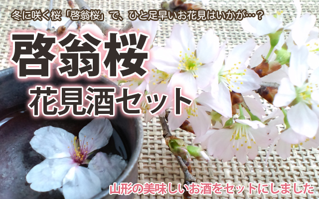 啓翁桜 日本酒 花見酒セット