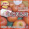 山形県天童市 丸山果樹園 栄養周期栽培   蜜入りりんご 訳あり10kg