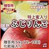 山形県天童市 丸山果樹園 栄養周期栽培   蜜入りりんご 贈答5kg