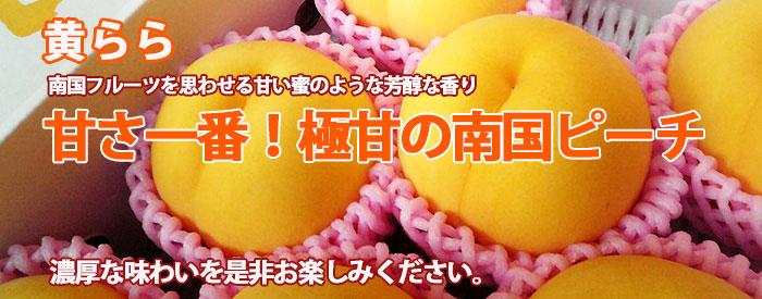 黄桃 黄らら