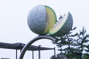 庄内砂丘メロン、アールスメロン、紅花メロン  ネット通販花屋 花樹有(かじゅある)