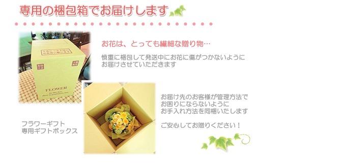 フラワーギフト 送料無料 ネット通販花屋花樹有(かじゅある)