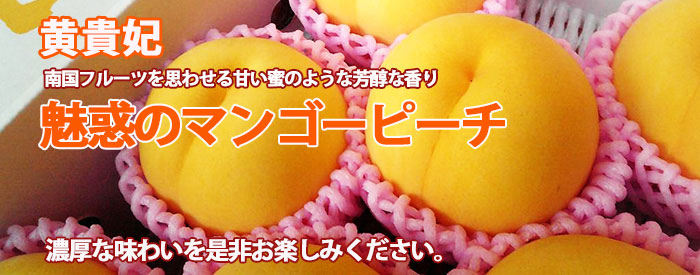 桃 黄貴妃 トップ