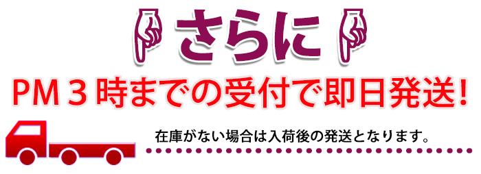 クリスマス 送料無料 ネット通販花屋花樹有(かじゅある)