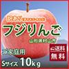 山形県  村山市 工藤農園の訳あり りんご サンふじ 完熟蜜入り 10kg Sサイズ