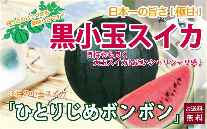 山形県村山市 袖崎の小玉スイカ ひとりじめ ネット通販花屋 花樹有(かじゅある)